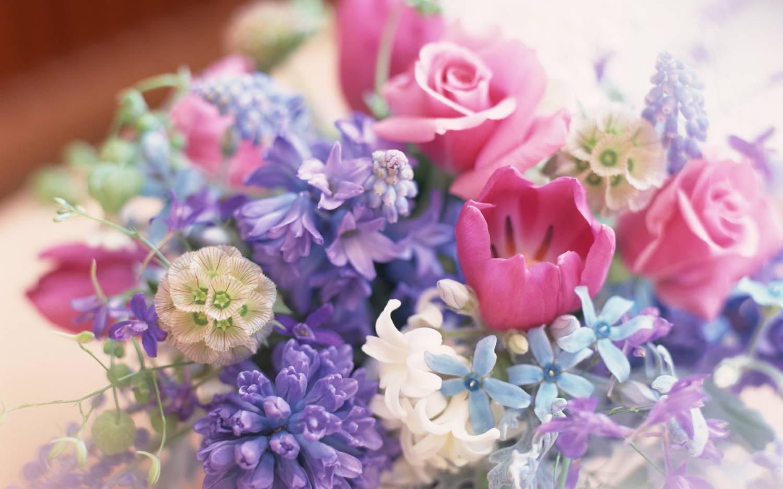 На рабочий стол красивые цветы