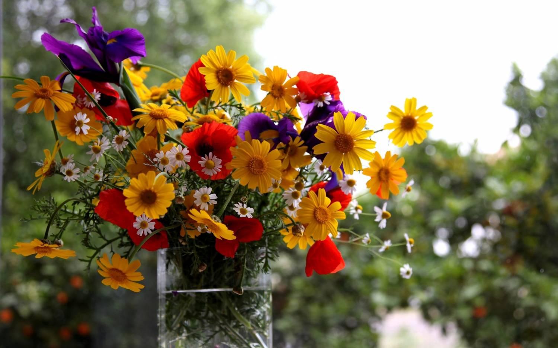 На рабочий стол букет полевых цветов